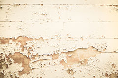Old wooden nostalgic background with peeled color in beige. Stock Images
