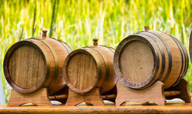 Old wooden oil casks Stock Images