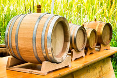 Old wooden oil casks Royalty Free Stock Images