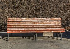 An old wooden painted brown color beautiful bench with black wrought-iron legs stands by the walkway on a bush hedge background. An old wooden painted brown stock photography