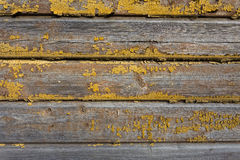 Old wooden painted and chipping paint. Stock Images