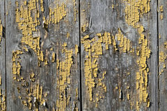Old wooden painted door Stock Image