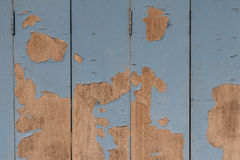Old wooden painted light blue rustic background, paint peeling Royalty Free Stock Image