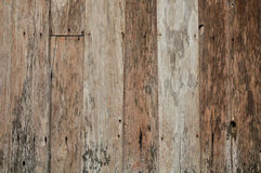 Old wooden panel Royalty Free Stock Photo