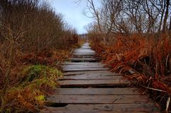 Old wooden path through a bog Royalty Free Stock Images