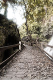 Old wooden pathway Stock Photos