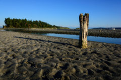 Old wooden pier post. Pier post on a Sandy beach Royalty Free Stock Photos