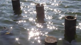 Old wooden pillars and glimmers of sun in water stock video footage