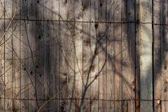 The old wooden plank fence. Closed area stock photo
