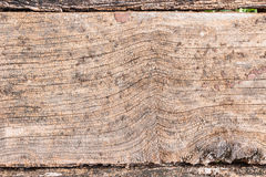 Old wooden plank. Stock Photo