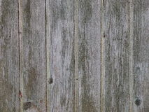 Old wooden planking background Royalty Free Stock Photo