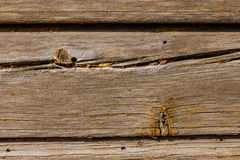 Old wooden planks (for background) Stock Images