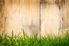 Old wooden planks with green grass in front Stock Image