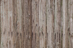 Old wooden planks 001 Royalty Free Stock Images