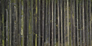 Old wooden planks with remnants of paint Stock Photo