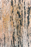 Old wooden planks surface background Stock Images