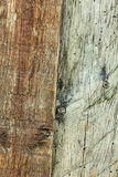 Old wooden planks Stock Image