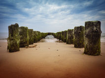 Old wooden poles. On a sandy beach, in the perspective of the sea or sky Stock Images