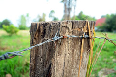 Old wooden post and barbed Royalty Free Stock Photo