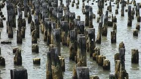 Old Wooden Posts Royalty Free Stock Photography