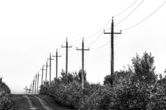 Old wooden power lines, black and white image. Kamchatka Peninsula, Russia.  royalty free stock photos