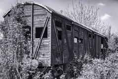 Old wooden railway wagon derelict captured by vegetation. Stock Photos