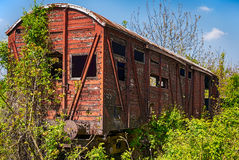 Old wooden railway wagon derelict captured by vegetation. Stock Photo