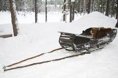Old wooden reindeer sleigh, Sweden Stock Photo