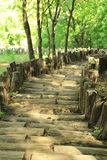 Old wooden road Stock Photo