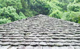 Old wooden roof on forest in rainy day. Royalty Free Stock Images