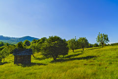 Old wooden ruin house in the mountains of Fagaras Mountains in R Royalty Free Stock Images