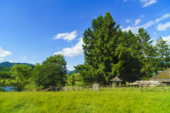 Old wooden ruin house in the mountains of Fagaras Mountains in R. Omania Stock Images