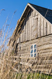 Old wooden rustic house and hedge through reed Royalty Free Stock Image