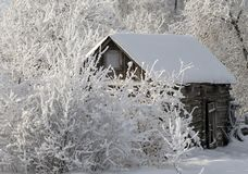 Old wooden shed during a snowfall royalty free stock photography
