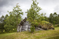 Old wooden shed. Really old wooden shed in Lapland, Sweden. Grass is growing on the roof. The shed is falling apart and slowly going back to nature Stock Photo