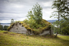 Old wooden shed. Really old wooden shed in Lapland, Sweden. Grass is growing on the roof. The shed is falling apart and slowly going back to nature Royalty Free Stock Images