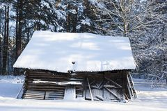 Old wooden shed Stock Photography