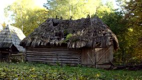 Old wooden shed with the ruined thatched roof, stock video