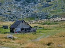 Old wooden sheepfold in the top of the mountains Stock Image