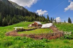 Old wooden sheepfold Royalty Free Stock Images