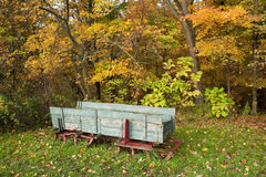Old wooden sleigh in woods. Royalty Free Stock Photography