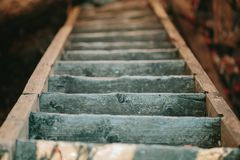 Old wooden staircase descending down. Royalty Free Stock Images