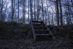 Old wooden staircase over a stone wall, in a forest in northern Sweden. Birch trees in the background, fallen leaves in the foregr stock images