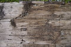 The Old Wooden Step. The old uncleaned uneven wooden step outdoors. Background. Horizontal Royalty Free Stock Photography