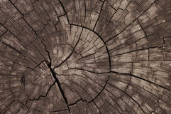Old Wooden - Stock Image Stock Photo