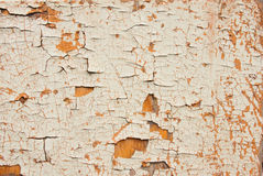 Old wooden surface with a chappy paint Royalty Free Stock Photos
