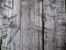 Old wooden surface Royalty Free Stock Photos