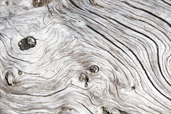 Old wooden surface. Cracked. Close-up. Surface rough and dry Royalty Free Stock Image