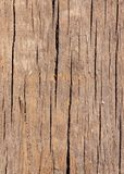 Old wooden surface. Royalty Free Stock Image