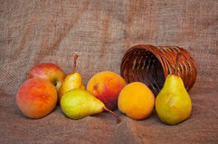 Various fresh fruit Stock Images